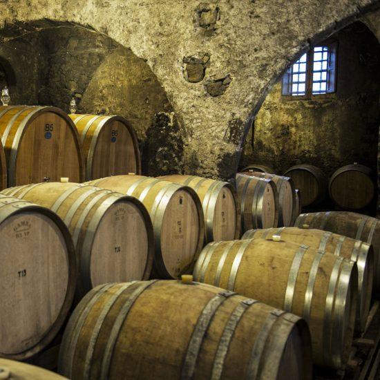new-2-luoghi-del-vino_6